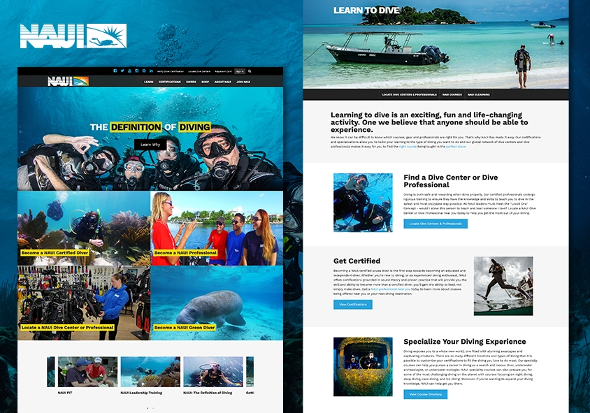 <p>NAUI.org website design and development project screenshots</p>